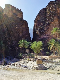 wadi bani awf3